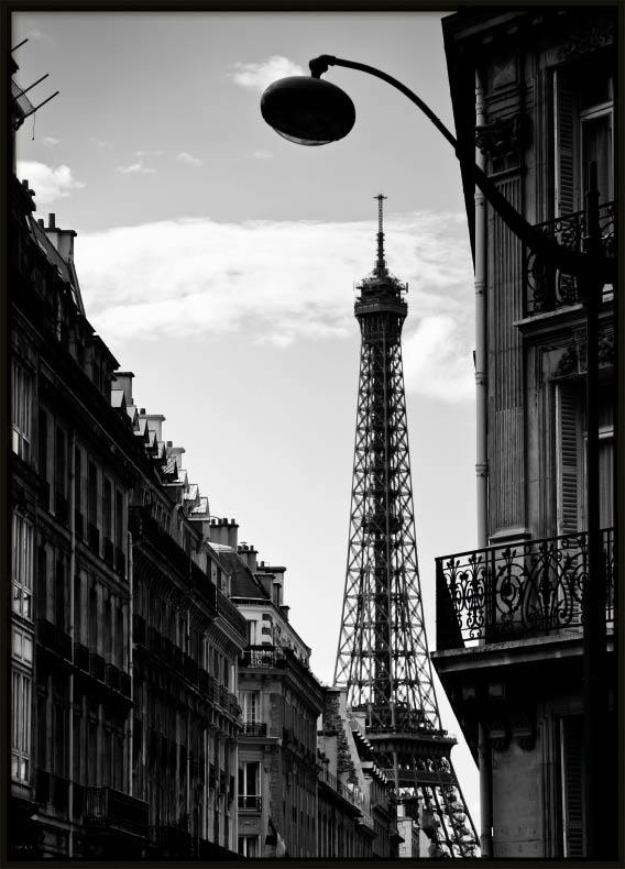 Paris Picture, Poster