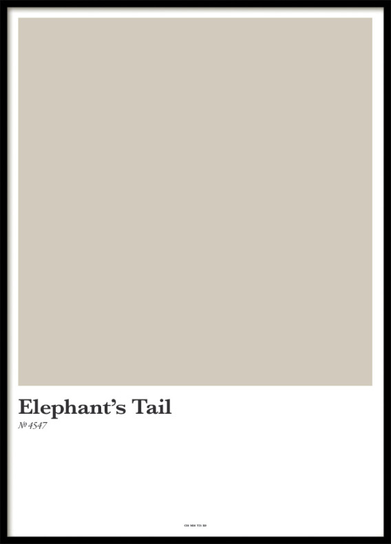ELEPHANT´S TAIL, POSTER