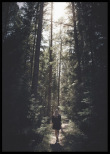 Poster, Woman in the forest